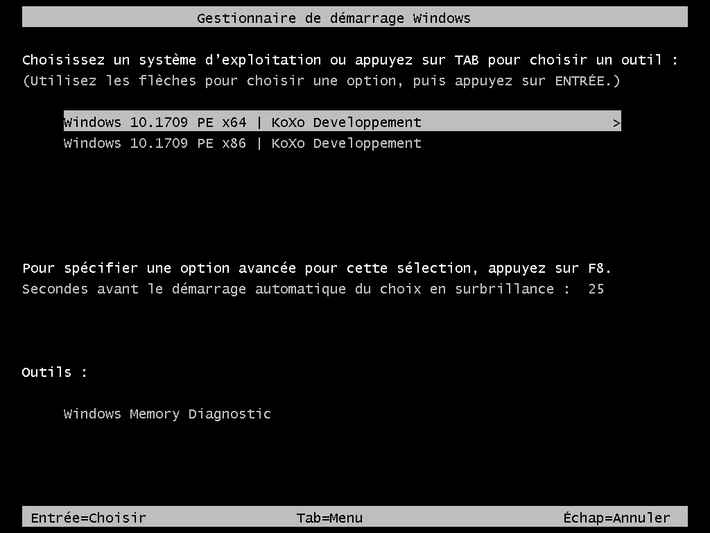 multiboot-w10-1709.png